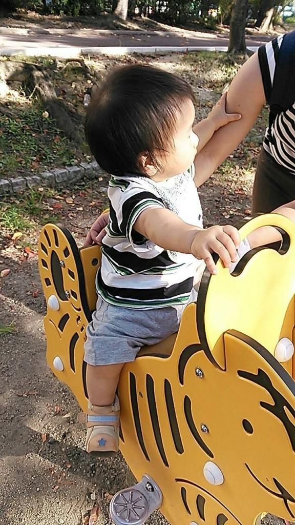 公園の遊具 虎とウサギ