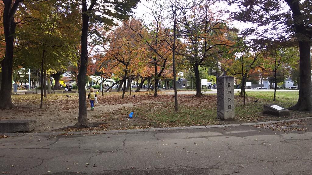 十三公園 花の公園