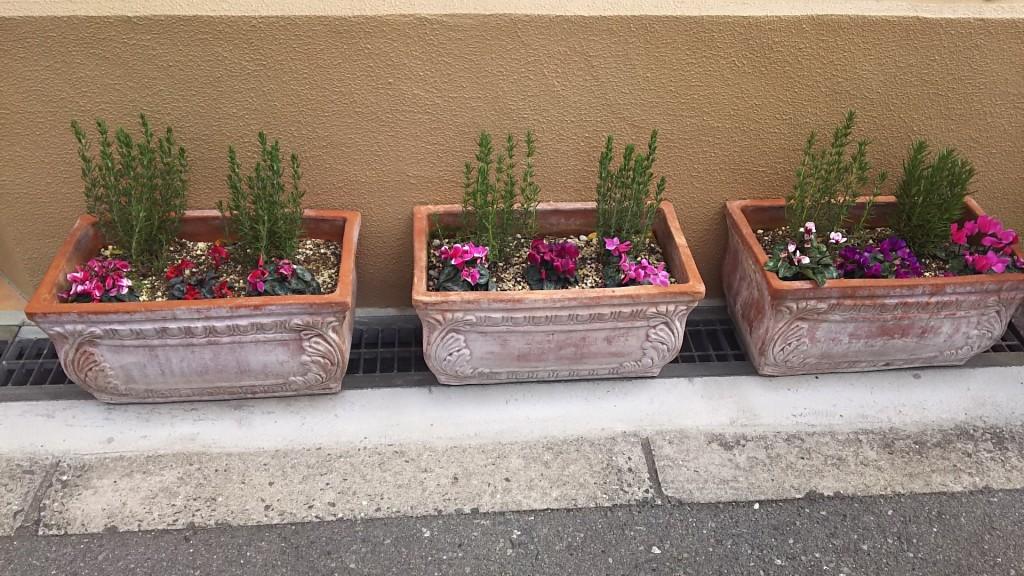 トラットリアチェーロ 店前 花壇