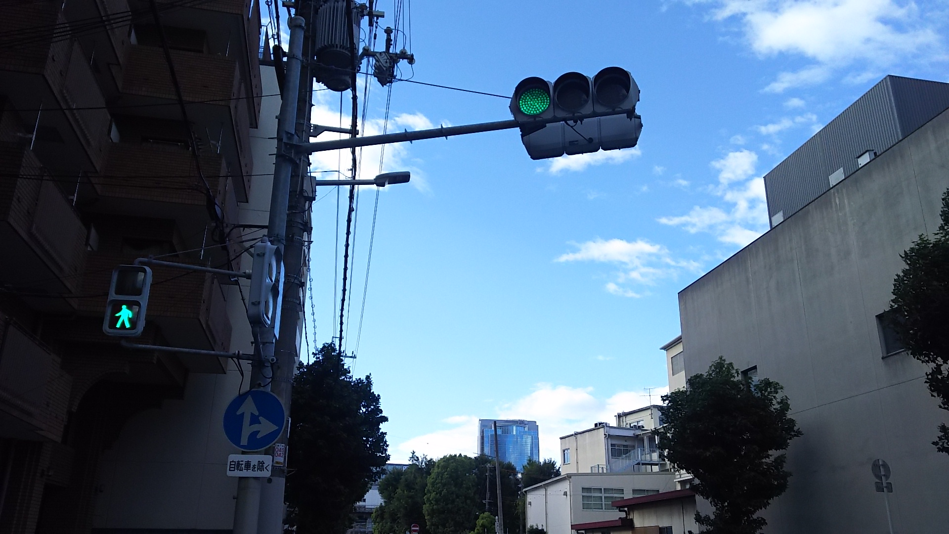 台風で曲がった信号機