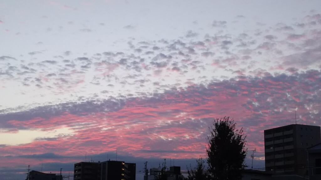 2018年9月5日 淀川河川敷 西中島地区 から見た 夕焼け空