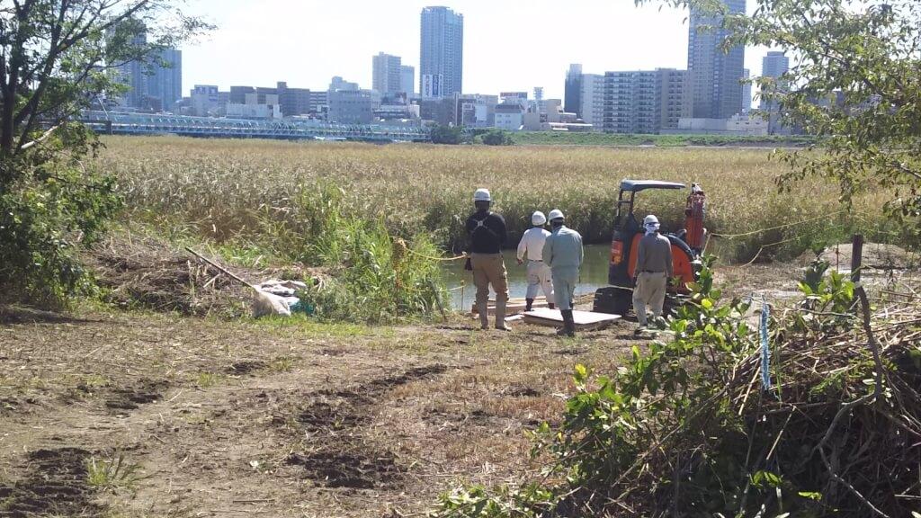 2018年9月28日 11時頃 淀川河川敷 西中島地区 干潟エリア 水たまり