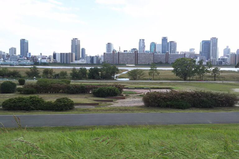 【淀川区】台風24号が通り過ぎた後の淀川河川敷は・・・? 西中島地区 干潟エリアに、今までなかったものができていました!