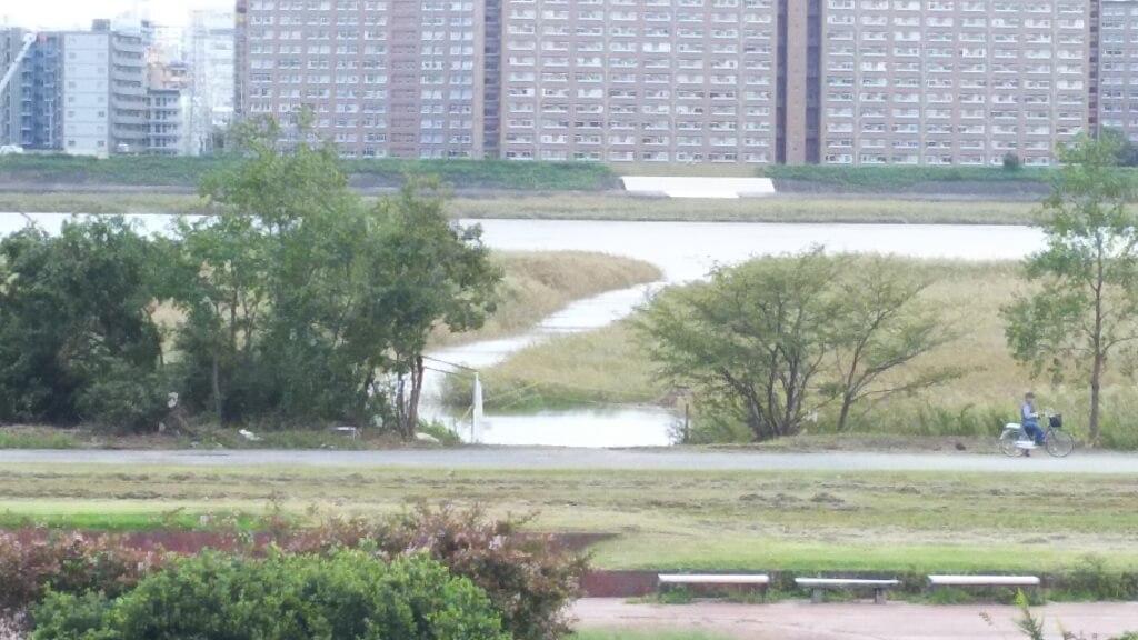 淀川河川敷 西中島地区 干潟にできた水路 より