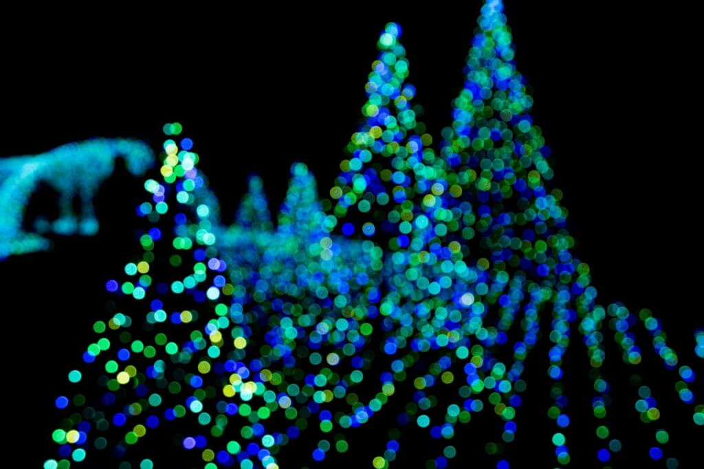 クリスマス イルミネーション