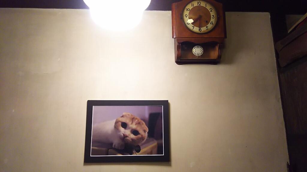 喫茶 文化茶屋 壁に飾られた ぬこの写真と 時計