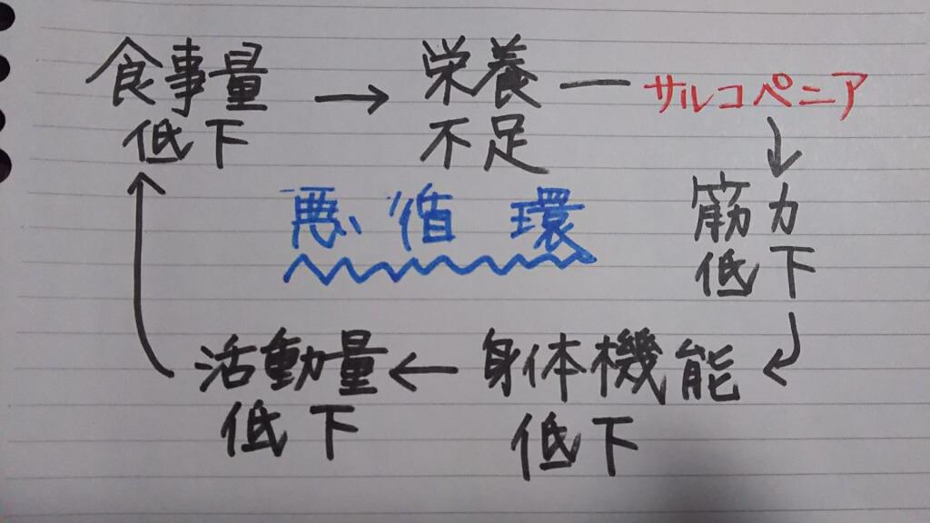 フレイル サイクル 図式を 簡略化したもの